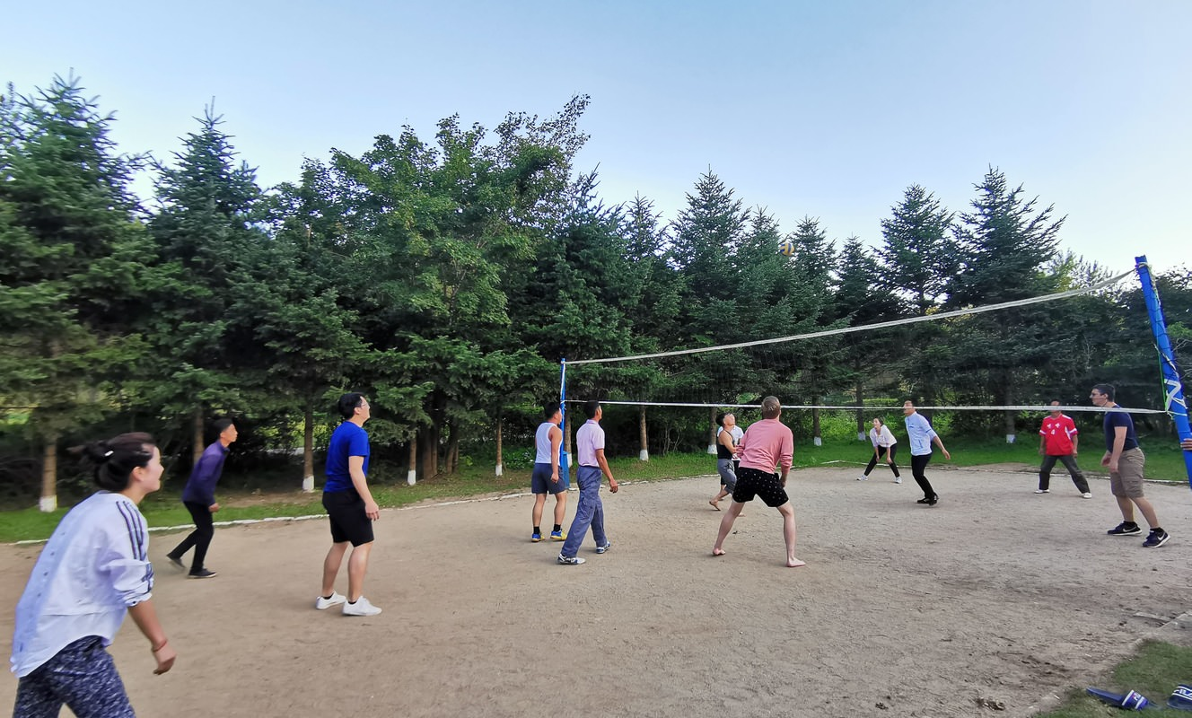 Large volleyball1